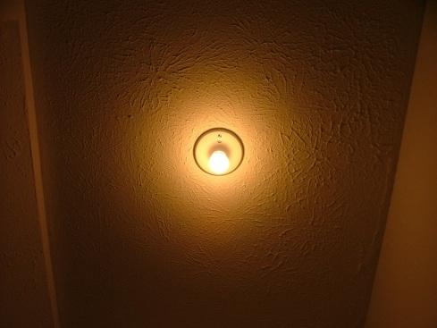 Original 40 Watt incandescent